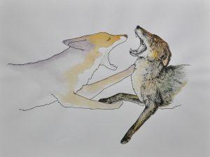 Laura Fedynyszyn- FoxyBoxing